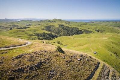 Cambria, Cayucos, Morro Bay, Los Osos Residential Lots & Land For Sale: Villa Creek Road