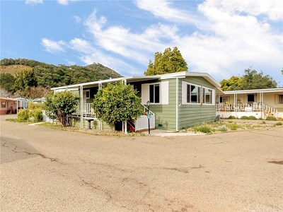 San Luis Obispo County Mobile Home For Sale: 1037 Nancy Drive