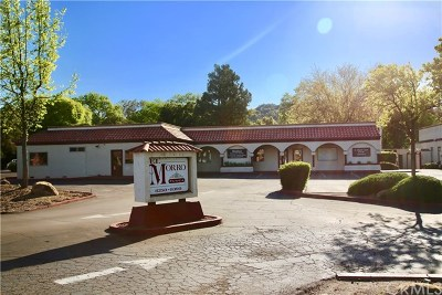 San Luis Obispo County Commercial For Sale: 8390 Morro Road #1