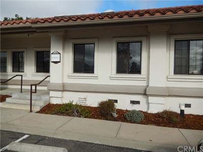 San Luis Obispo County Commercial For Sale: 310 S Halcyon Road #106
