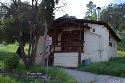 Sylmar Single Family Home For Sale: 11317 Santol Drive