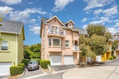 San Luis Obispo Condo/Townhouse For Sale: 1144 Walnut Street #12