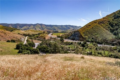 San Luis Obispo Residential Lots & Land For Sale: 56 Buena Vista Avenue