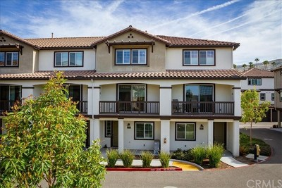 San Luis Obispo Condo/Townhouse For Sale: 934 Bay Leaf Drive #2205