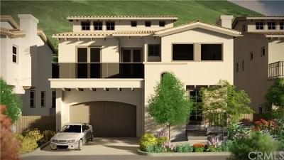San Luis Obispo County Single Family Home For Sale: 1067 Canyon Lane