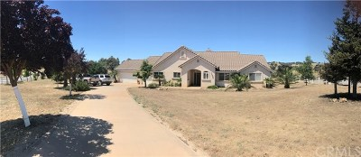 Santa Margarita, Templeton, Atascadero, Paso Robles Single Family Home For Sale: 2785 River Road