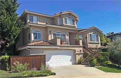 San Luis Obispo Single Family Home For Sale: 4590 Spanish Oaks Drive