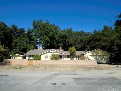 Newhall Single Family Home For Sale: 24150 Cross Street