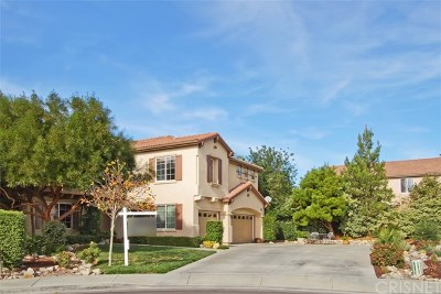 Murrieta Single Family Home For Sale: 39073 Santa Rosa Court