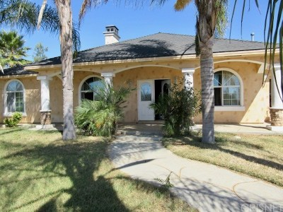Perris Single Family Home For Sale: 20268 Warren Road