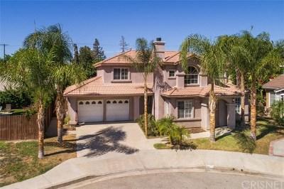 Winnetka Single Family Home For Sale: 8205 Quakertown Avenue