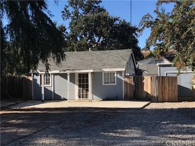 Acton, Canyon Country, Saugus, Santa Clarita, Castaic, Stevenson Ranch, Newhall, Valencia, Agua Dulce Single Family Home For Sale: 24619 Kansas Street