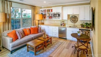 Acton, Canyon Country, Castaic, Newhall, Saugus, Santa Clarita, Stevenson Ranch, Valencia, Agua Dulce Single Family Home For Sale: 21831 Moveo Drive