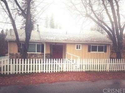 Weaverville Single Family Home For Sale: 310 Glen Road