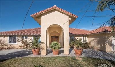 Littlerock Single Family Home For Sale: 10045 E Avenue R