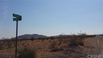 Barstow Residential Lots & Land For Sale: 320 Bonanza Trail