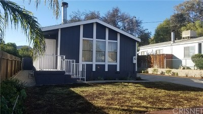 Castaic Single Family Home For Sale: 29015 Eveningside Drive