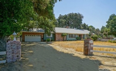 Canyon Country Single Family Home For Sale: 16332 Oak Bluff Road