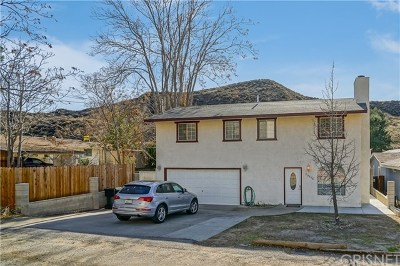 Castaic Single Family Home For Sale: 29516 Cromwell Avenue