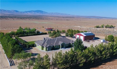 Lancaster, Palmdale Single Family Home For Sale: 50714 Taney Road