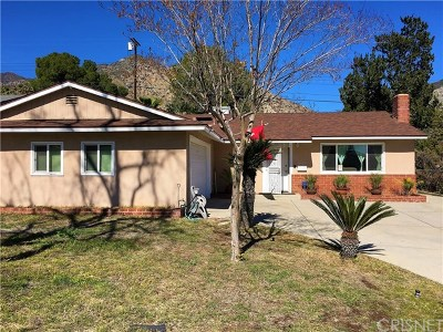 Sylmar Single Family Home For Sale: 13682 Shablow Avenue