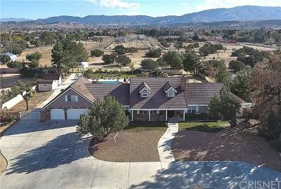 Lancaster, Palmdale Single Family Home For Sale: 2746 W Avenue O