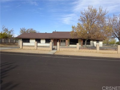 Palmdale Single Family Home For Sale: 703 Denise Avenue