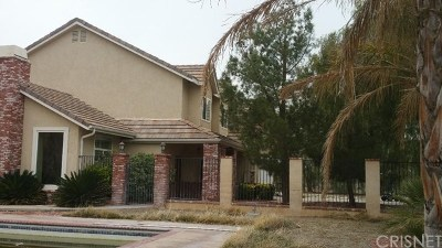 Agua Dulce Single Family Home Active Under Contract: 31803 Indianview Road