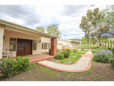 Castaic Single Family Home For Sale: 31045 Romero Canyon Road