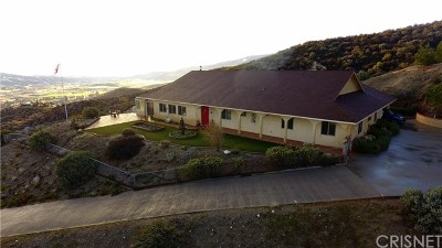 Leona Valley Single Family Home For Sale: 39900 95th Street W