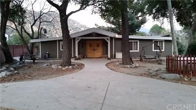 Tujunga Single Family Home For Sale: 2256 Stonyvale Road