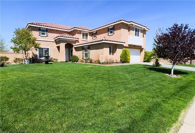 Palmdale CA Single Family Home For Sale: $394,900