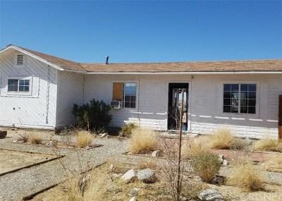 Palmdale Single Family Home For Sale: 20315 E Avenue R