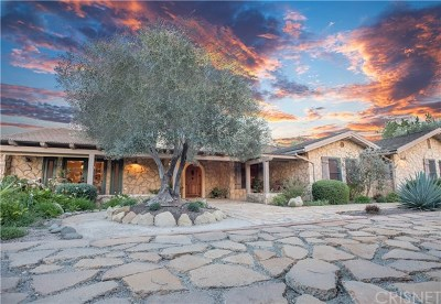 Santa Ynez Single Family Home For Sale: 3285 Buck Canyon Road