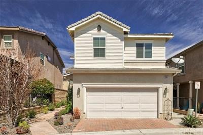 Acton, Canyon Country, Castaic, Newhall, Saugus, Stevenson Ranch, Valencia, Agua Dulce, Santa Clarita Single Family Home For Sale: 23657 Marion Way
