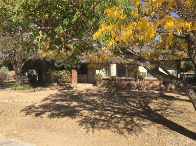 Hesperia Single Family Home For Sale: 11681 Hemlock Avenue