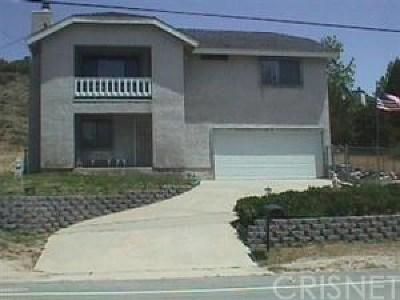 Lake Hughes Single Family Home For Sale: 15031 Elizabeth Lake Road