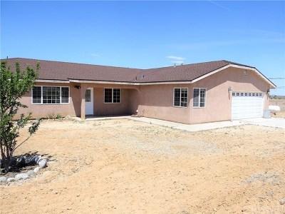 Pearblossom Single Family Home For Sale: 13325 E Avenue W2