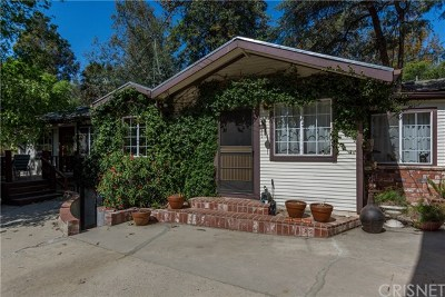 Shadow Hills Single Family Home For Sale: 10247 Sunland Boulevard