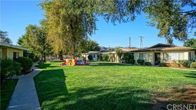 Castaic Multi Family Home For Sale: 27558 Violin Canyon Road