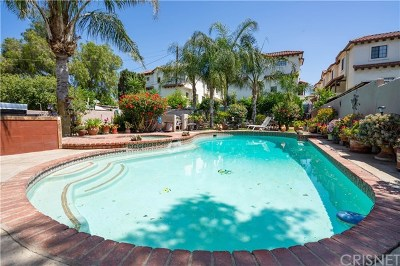 San Fernando Single Family Home For Sale: 1115 Mountain View Street