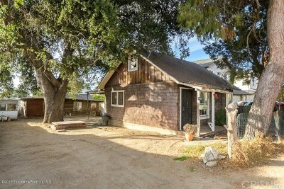 Sunland Single Family Home For Sale: 10709 Mather Avenue