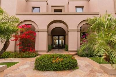 Calabasas Single Family Home For Sale: 24261 Park Granada