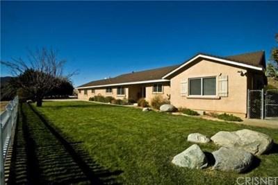 Leona Valley Single Family Home For Sale: 9235 Leona Avenue