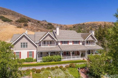Agoura Hills Single Family Home For Sale: 6144 Chesebro Road