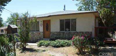 Leona Valley Single Family Home For Sale: 8728 Leona Avenue