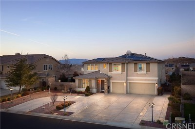 Lancaster, Palmdale Single Family Home For Sale: 3821 Derby Circle