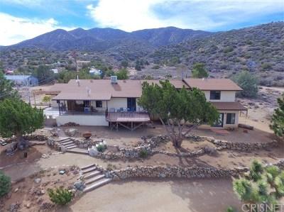 Juniper Hills Single Family Home For Sale: 9950 Cima Mesa Road