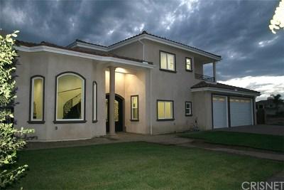 Northridge Single Family Home For Sale: 17646 Stare