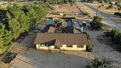 Lancaster, Palmdale Single Family Home For Sale: 2358 W Avenue N